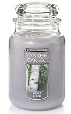 YANKEE CANDLE JAR 22oz Jar Silver Birch 22oz Jug Jar