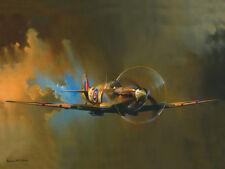 WWii Spitfire Fighter Plane Metal Sign