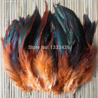 ����Beautiful  Rooster Feathers Craft Fascinator Many Colours  10-20cm����