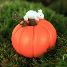 Pumpkin and Mouse Miniature ~ Fairy Garden ~ Accessory ~ Handmade by Jennifer