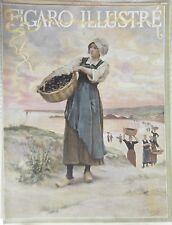 PLANCHE  1891  D APRES TABLEAU DE A. DEYROLLE RAMASSAGE DES MOULES EN MER