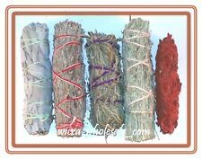 SET of 5 Sage Smudge Stick SAMPLER Blue, Red, White, Desert, Dragons blood ~ NEW