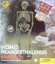 HOMO NEANDERTHALENSIS SKELETON NEANDERTHAL MAN DIG OUT EXCAVATION KIT