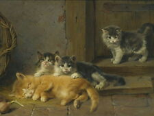 "Print Animals Kittens Cats Oil painting Picture Printed on canvas 12""X16"" P123"
