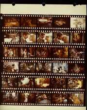 """Indiana Jones And The Temple Of Doom 8x10"""" Color Contact Sheet Photo #J8374"""