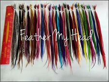 500 Bulk Wholesale Cheap Discounted Feather Hair Extensions Bright And Naturals
