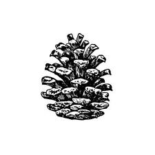 PINE CONE Small UNMOUNTED rubber stamp, winter, Christmas #19