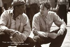SHAWSHANK REDEMPTION - MOVIE QUOTE POSTER 24x36 FREEMAN ROBBINS 42461