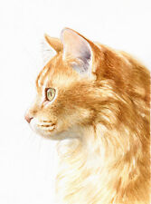 "8 x 6"" Custom Watercolour Pet Portrait - any pet painted from your photos"