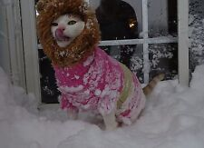 Scooter Heaby Industryz Presentz Onk the Snow Lion from the Blizzard of '16