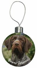 German Wirehair Pointer 'Yours Forever' Christmas Tree Bauble Decora, AD-GWP1yCB