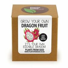 Plants From Seed - Grow Your Own Dragon Fruit Plant Kit