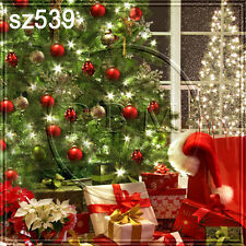 Christmas 10'x10' Computer-painted Scenic Photo Background Backdrop SZ539B881