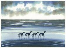 Whippet greyhound  Dog  Contempory Beach Watercolour   Painting