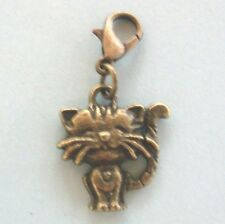 charms chat bronze coeur