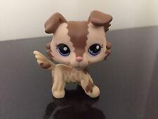 Littlest Pet Shop LPS Rare Brown Cream Collie Puppy Dog #2210 Blue Eyes NICE