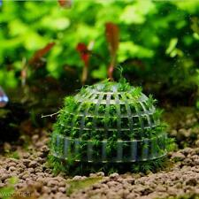 Aquarium Fish Tank Natural Moss Ball Filter for Live Plant Crystal Red Shrimp