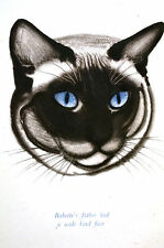 Clare Newberry Portrait of FATHER CAT with BIG BLUE EYES 1957 Art Print Matted