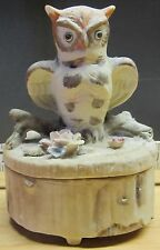 Owl on a Log  Ceramic Trinket / Jewelry Box (468)