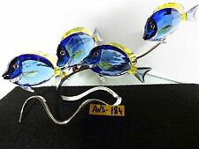 SWAROVSKI CRYSTAL SURGEONFISH SURGEON FISH SCUBA BLUE # 1034023 MIB DISNEY DORY