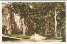 Princeton NJ University McCosh Walk Postcard PC WB New Jersey College New