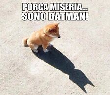 funny digital image picture about dog batman send by email #2