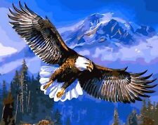 FD4181 DIY Paint By Number On Canvas Digital Oil Painting Kit Flying Eagle ♫
