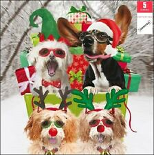 Pack of 5 Christmassy Dogs Samaritans Charity Christmas Cards Xmas Card Packs