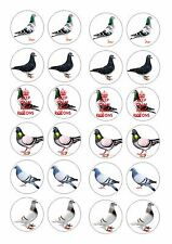 24 RACING PIGEON / PIGEONS  ICING EDIBLE FAIRY/CUP CAKE  TOPPERS