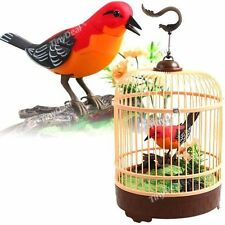 Singing Chirping Bird Cage Realistic Sound Movement Music Box Mechanic Toy Kid