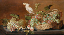 Still life with parrot Roelof Koets Stillleben Trauben Papagei Vogel B A3 03183