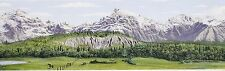 "MODEL TRAIN SCENIC WALLPAPER BORDER, MOUNTAINS, HOBBIES  9"" TALL X 144"" LONG"