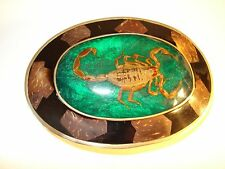 Vintage Real Scorpion and Brass Belt Buckle - Mexico