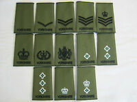 Yorkshire Regiment Rank Slide in Olive British Army / Military (1 PAIR)