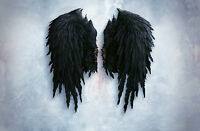 Framed Print - Jet Black Gothic Feather Angel Wings (Picture Poster Art Bible)