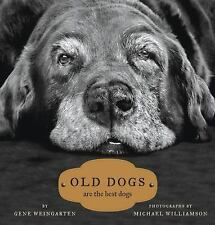 Old Dogs: Are the Best Dogs