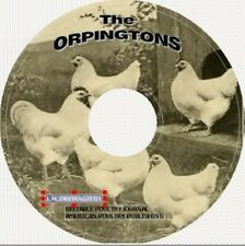 STANDARD-BRED ORPINGTONS Chickens Poultry on CD