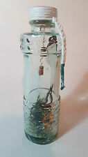WITCH BOTTLE, SPIRIT HOME, PROTECTION, HAND MADE ORIGINAL 100% AUTHENTIC [B1a]