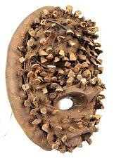 Art Africain Tribal - Rare Masque Fétiche Guéré couvert de Véritables Dents ++++