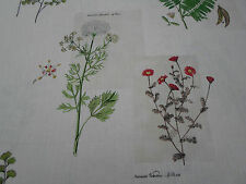 Sanderson Curtain Fabric  'Parchment Flowers' 1.7 METRES Emerald/White ~ Linen