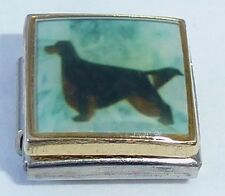 GORDON SETTER Italian Charm DG97 Terrier Dog Dogs