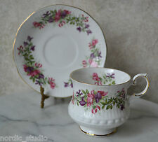 WILD FLOWERS by QUEEN'S Rosina China 2 pc TEA CUP TEACUP SET, English Bone China
