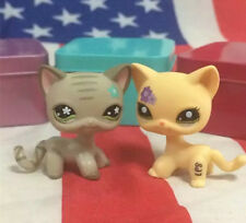 Littlest Pet Shop Standing Cat Short Hair Yellow Purple Flowers LPS #1962#483X2