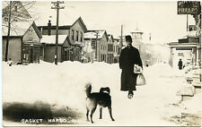 RPPC NY Sackets Harbor Dr Phelps on Main Street with Dog also Dentist Sign