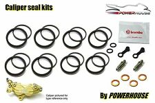 Aprilia RS250 1999 99 Brembo front brake caliper seal repair rebuild kit