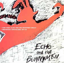 The Pictures on My Wall, Echo & the Bunnymen, Good Import, Single