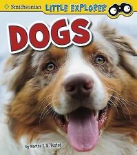 Little Scientist Ser.: Dogs by Martha E. H. Rustad (2014, Hardcover)