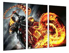 Cuadro Moderno Ghost Rider, El motorista Fantasma, Cine, ref. 26491