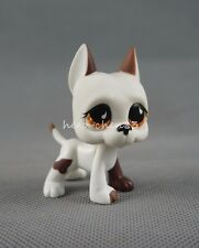 Littlest Pet Shop LPS 750 White Brown Great Dane Dog Puppy Brown Eyes Girl Toys