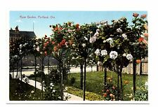 Rose Garden Portland Oregon Vintage Postcard Divided Back Unposted